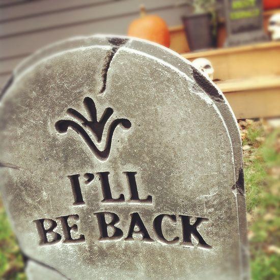 Can we talk Halloween?