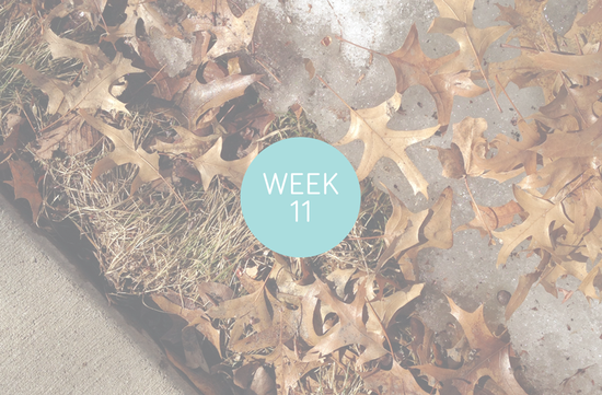 Project Life, Week Eleven