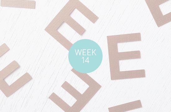 Project Life, Week Fourteen + Fifteen