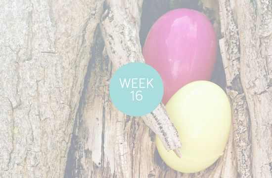 Project Life, Weeks Sixteen + Seventeen