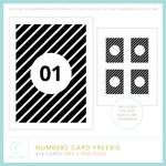 CZ_NumbersCardFreebiePREV